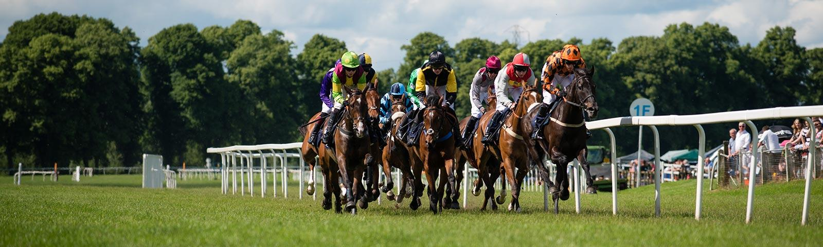 Group of jockeys racing at Worcester Racecourse.